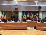 Países de la Celac apoyan presidencia pro témpore de Bolivia en 2019