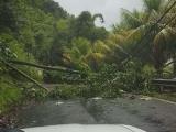 Dominica devastada tras el paso del huracán María, dice Primer Ministro