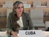 Defiende Cuba en Ginebra el derecho a la legítima defensa