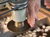 Cuba y China se alían para la producción de seda